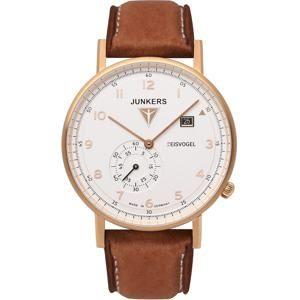 Junkers F13 Eisvogel 6732-4